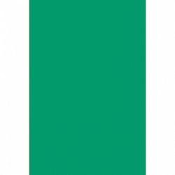 Amscan Abrosz - műanyag, ünnepi zöld